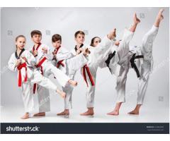 Taekwondo WT